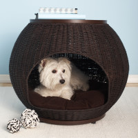 Save 20% on all Dog Beds